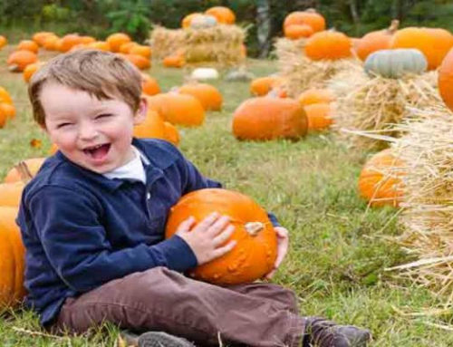 Fall Festivals and Pumpkins